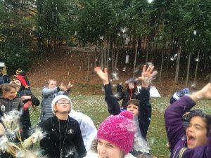 Milkweed Seed Race in Snow