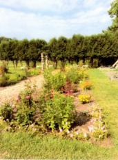Hiland Hall Gardens - Village School of North Bennington4